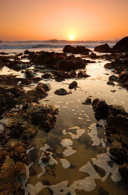 Tide Pool, Sunset Pescadero State Beach California