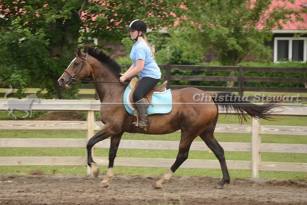 2016 Riding Lessons and Schooling