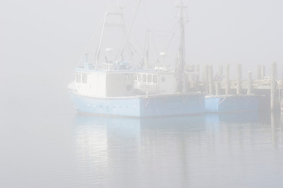 Fog in the harbor
