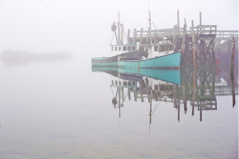 Morning Fog.Gull Cove.White Head Island