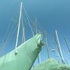 Masts Skyward.