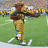 03 Dec 2011:  <br /> Baylor Bears mascot Hex Tex in action during the game between the Texas Longhorns and the Baylor Bears at Floyd Casey Stadium in Waco Texas.<br /> Baylor wins 48-24<br /> Manny Flores/CSM(Credit Image: © Manny Flores/Cal Sport Media/ZUMAPRESS.com)