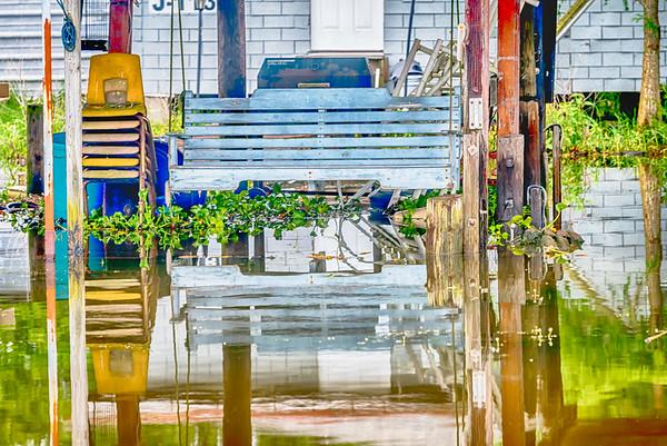 Bayou Vibrance