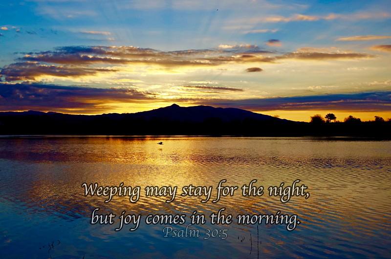 Joy in the Morning (QL)