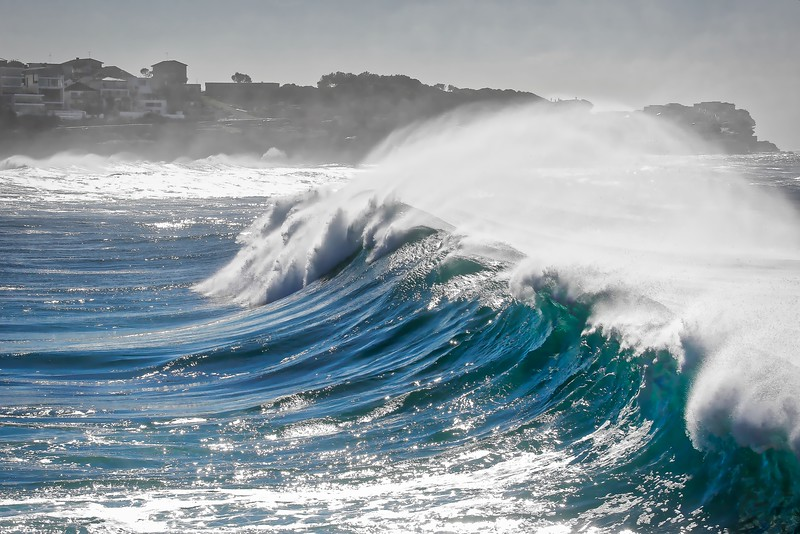 Rolling in the waves - Bronte Beach