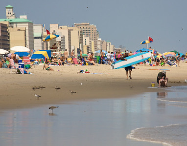 beach crowd boarder