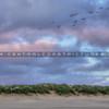 grover oceano dunes 1314
