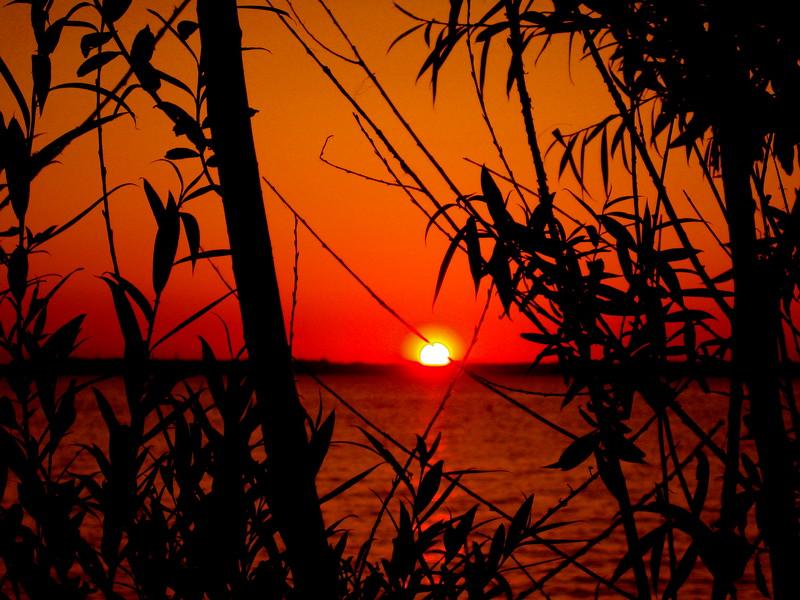 Sunset - Island Heights, NJ