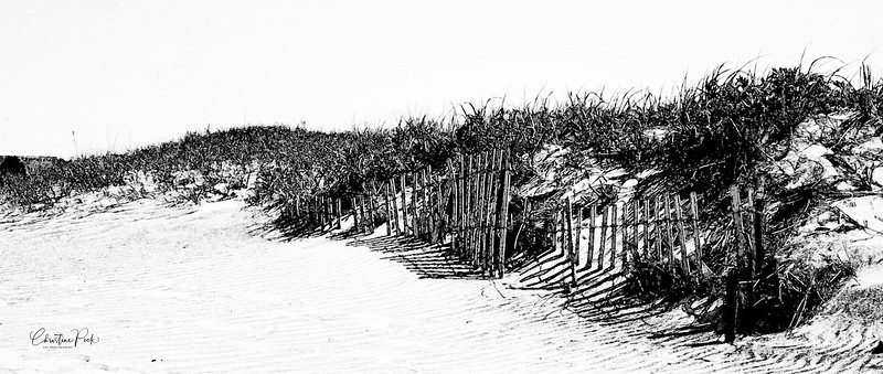 Storm Fence in Black and White