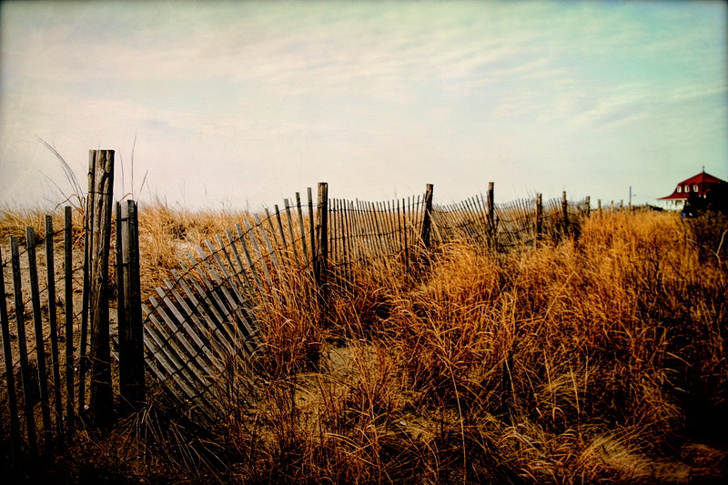Storm Fence by St Mary's, Cape May