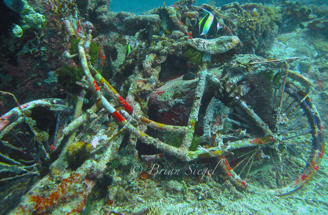 Diving at Gili Trawangan, Indonesia.
