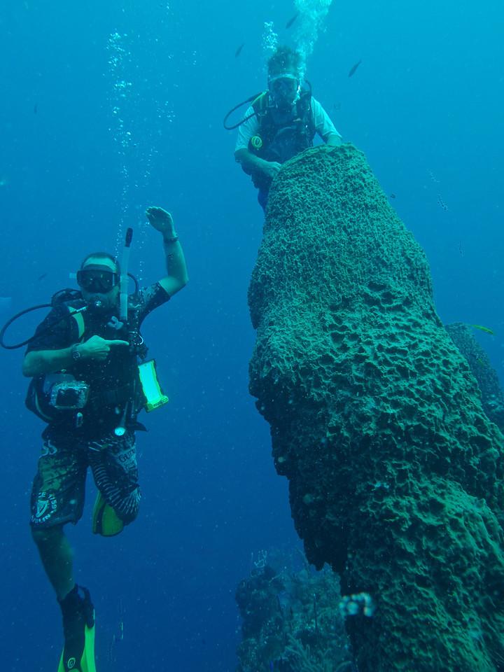 Huge Barrel Sponge-With Utila Cays Diving