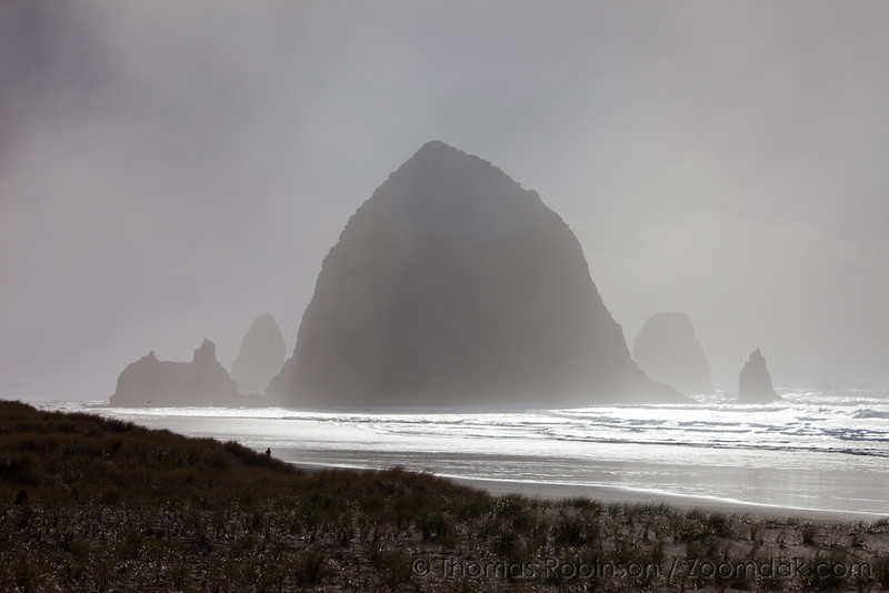 Fog Light, Haystack Rock