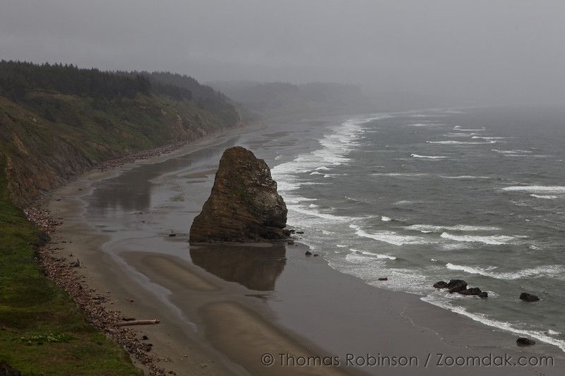 Gorilla Head (named for the face of a gorilla visible in rock) faces the sea at Cape Blanco, Oregon.