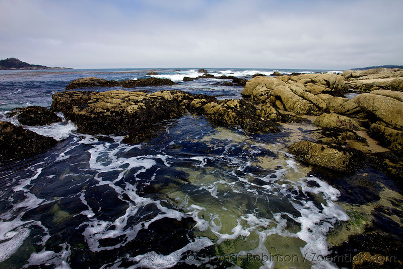 The seascape of rocks, kelp, ocean and foam at Ribera Beach near Carmel, California.