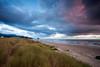 Oregon Coast Dunes at Sunset