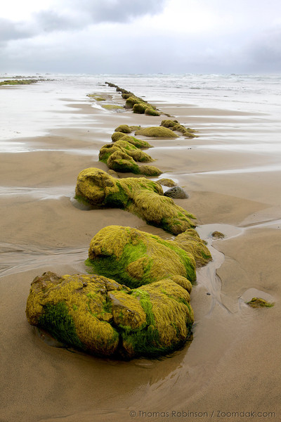 Ona Beach Seascape