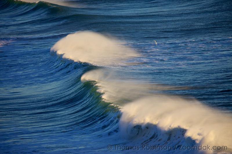 Pacific Ocean Wave Horsetails