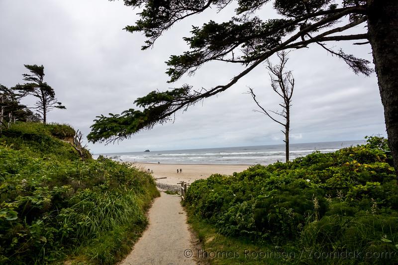 Hug Point Pathway