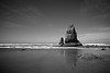Haytack's Needles stand the test of time, catching the morning sunshine in Cannon Beach, Oregon.