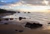 Beach Runner, Ecola State Park