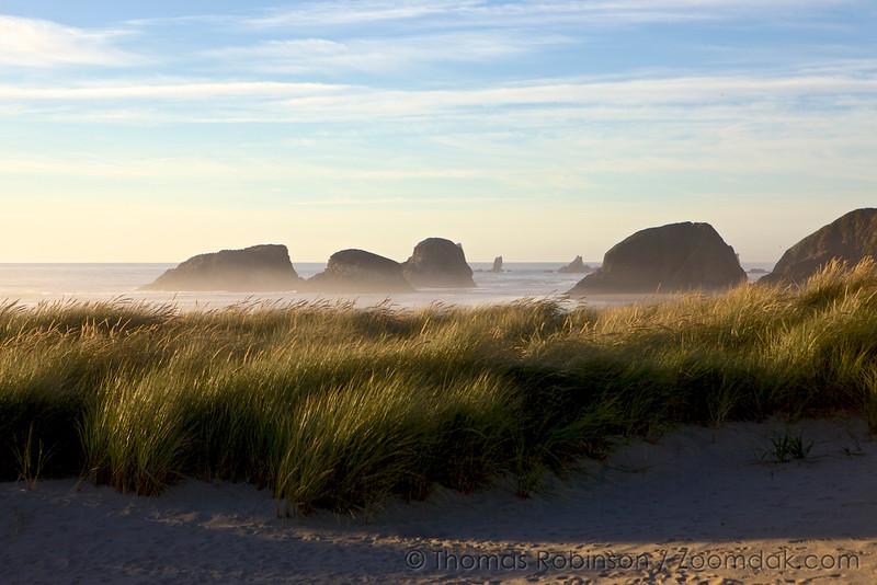 Oregon Coast Dunes