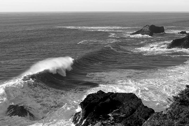 Crashing Wave in Black in White, Oregon Coast