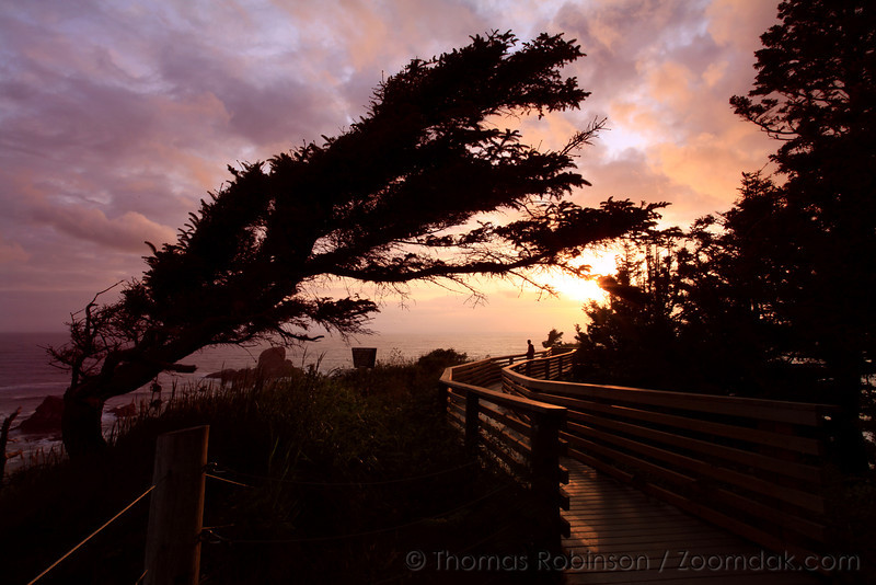 A silhouetted figure looks out to the sunset along the wooden pathway at the end of Ecola Point.