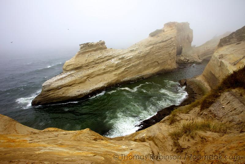 Cape Kiwanda Cliffs