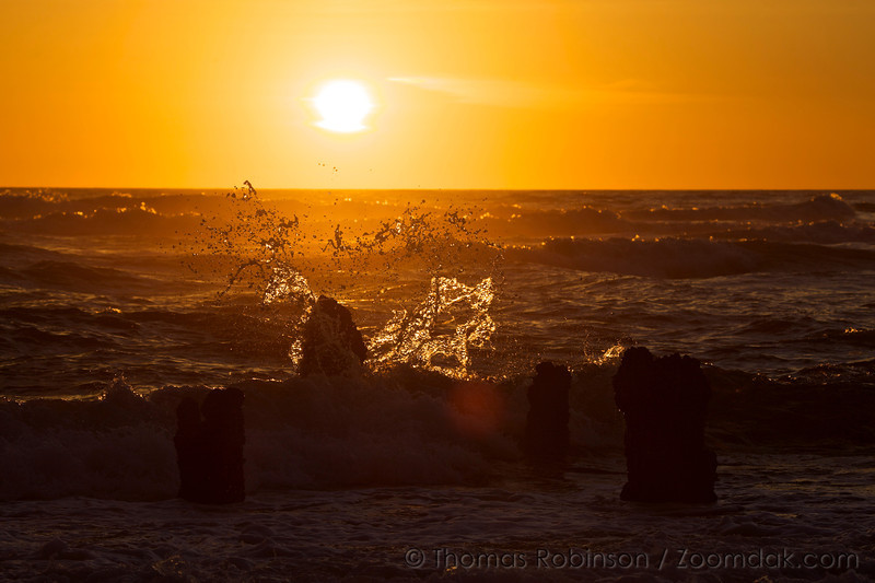 A wave catches sunset lighting as it splashes over a stump in the Ghost Forest in Neskowin, Oregon.