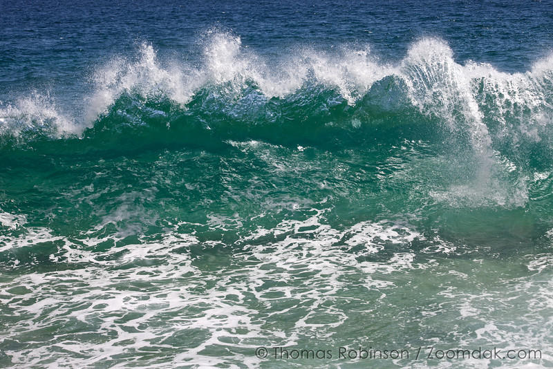 A wave begins to curl at Playa de Amo (Lover's Beach) in Cabo San Lucas, Mexico.
