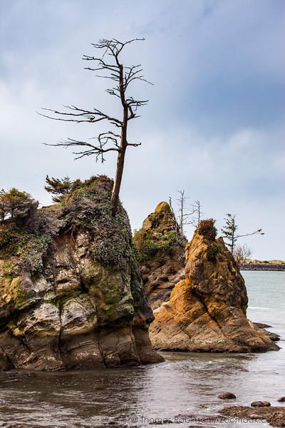 Crab Rock, Garibaldi, Oregon