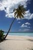 Beach,Antigua