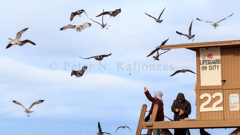 PKalionzesOnshorePhoto-5776