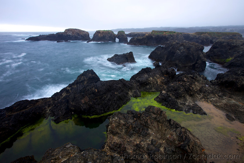 Slow exposures at sunrise show the movement of waves of the bright colored algae that surround the rocks at Mendocino Headlands State Park.