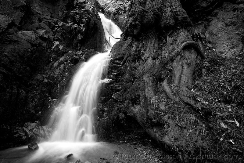 McWay creek cascades through a narrow chasm in the forest of Julia Pfeiffer Burns State Park, along the Big Sur coastline in California.