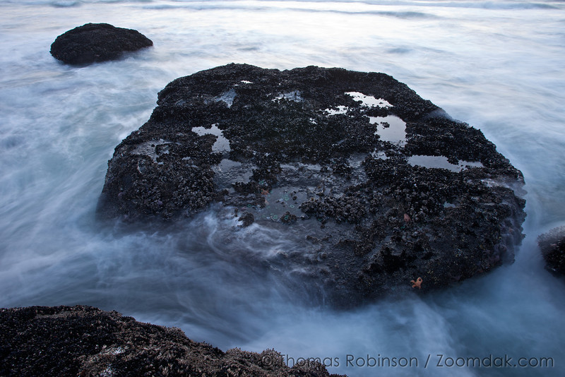 The incoming tide flows around a large rock near Indian Beach.