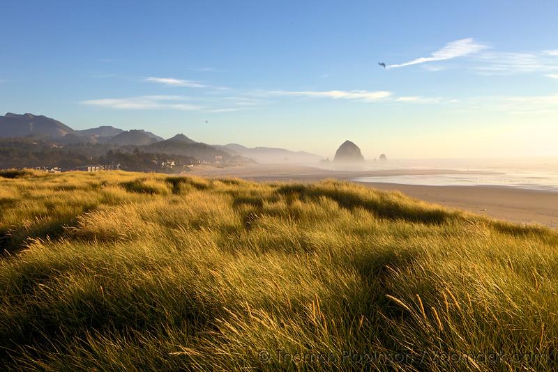 Dune View, Cannon Beach, Oregon