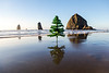 Cannon Beach Christmas