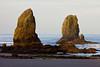 The golden light of sunrise illuminates the needles during a low tide near Haystack Rock.