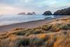 Murre Rocks and Dune Grass