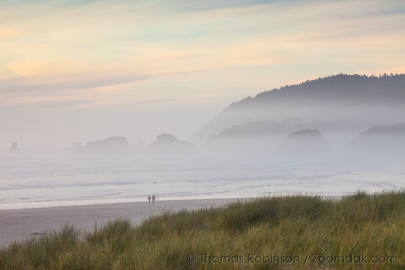 Foggy View of Chapman Beach