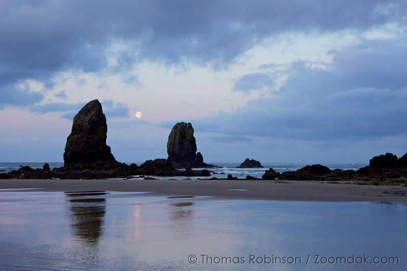 The full moon is visible between the needles at sunrise in Cannon Beach, Oregon. The occurrence of the full moon setting at the same time as sunrise happens only once a month.