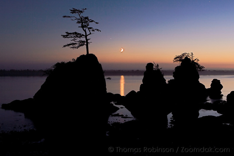 three_graces_Silhouette