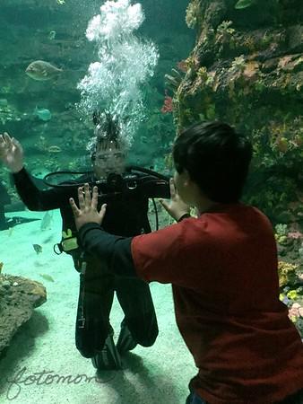 NC Aquarium 011915