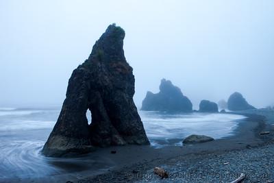 Ruby Beach in the Fog