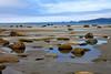 Cape Alava Tide Pools