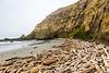 Cape Blanco Driftwood Cove