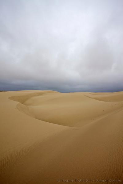 The rolling dunes of John Dellenback Dunes area create an amazing landscape.