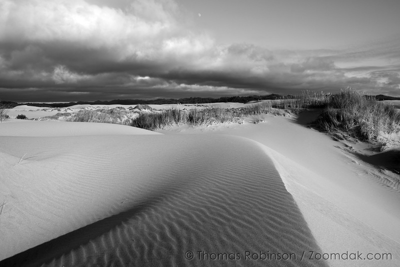 The clouds and moon slide above the shifting sands  of the dunes in the Oregon Coast National Dune Recreation Area. Black and white dunescape.